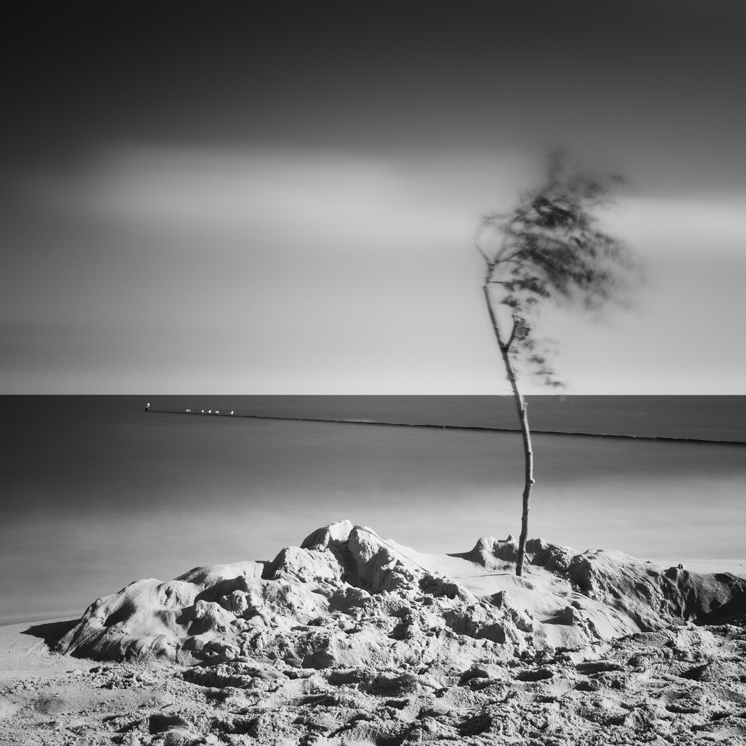 Photograph displaced / Usedom III by Andreas  Wecker on 500px
