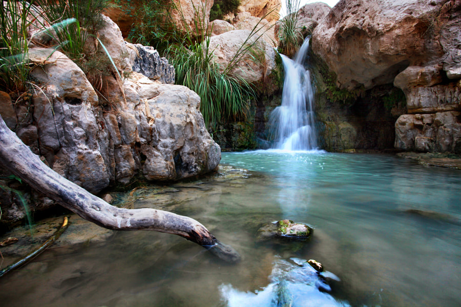 Ein Gedi Small waterfall by Raphael Ben Dor on 500px.com