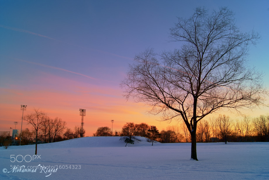 Photograph A Winter Twilight by Mohammad Riazat on 500px
