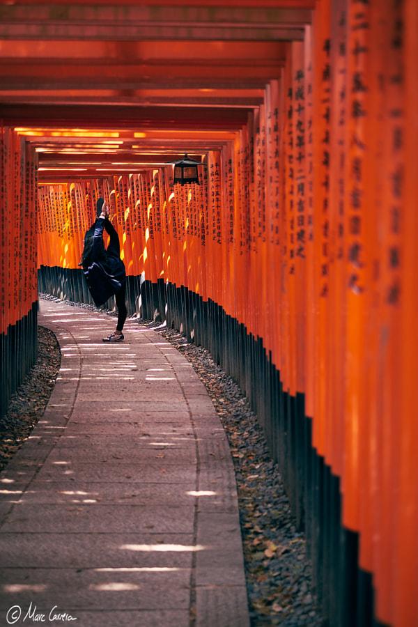 Fushimi Inari balances
