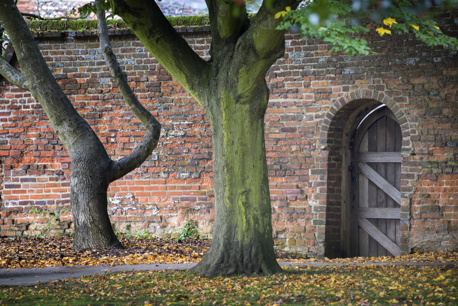 Photograph St Albans - World Wide Photo Walk by Saleh Ahmed on 500px