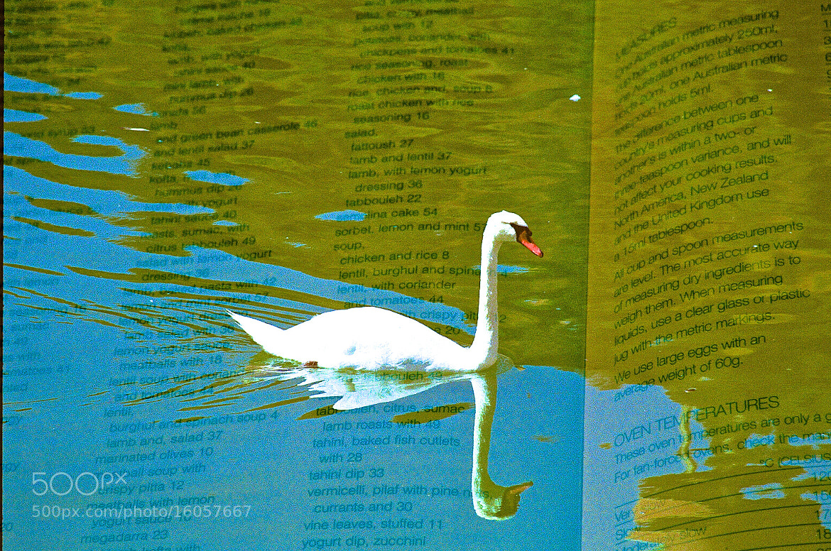 Photograph Floating Across A Recipe Book by Robert Marcus Klump on 500px