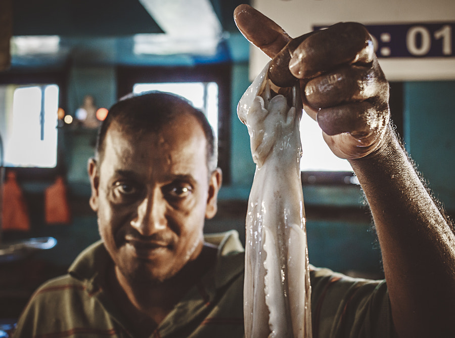 Fresh Octopus, Colpetty Market, Sri Lanka by Son of the Morning Light on 500px.com