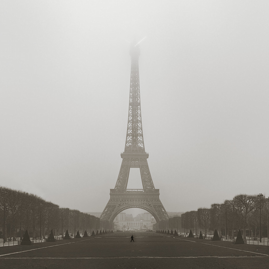 Photograph Foggy Morning in Paris by Metro DC Photography on 500px