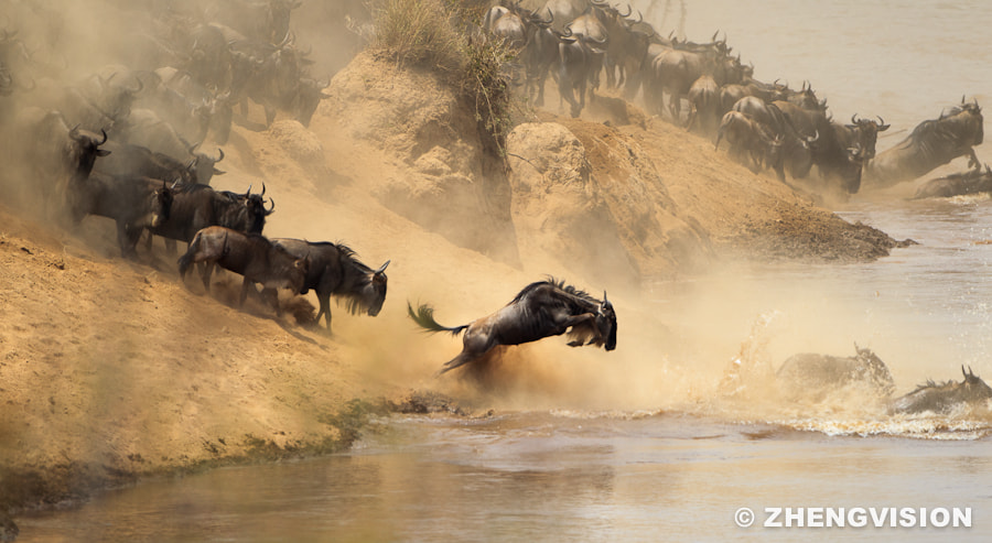 Photograph Crossing by ZHENG ZHANG on 500px