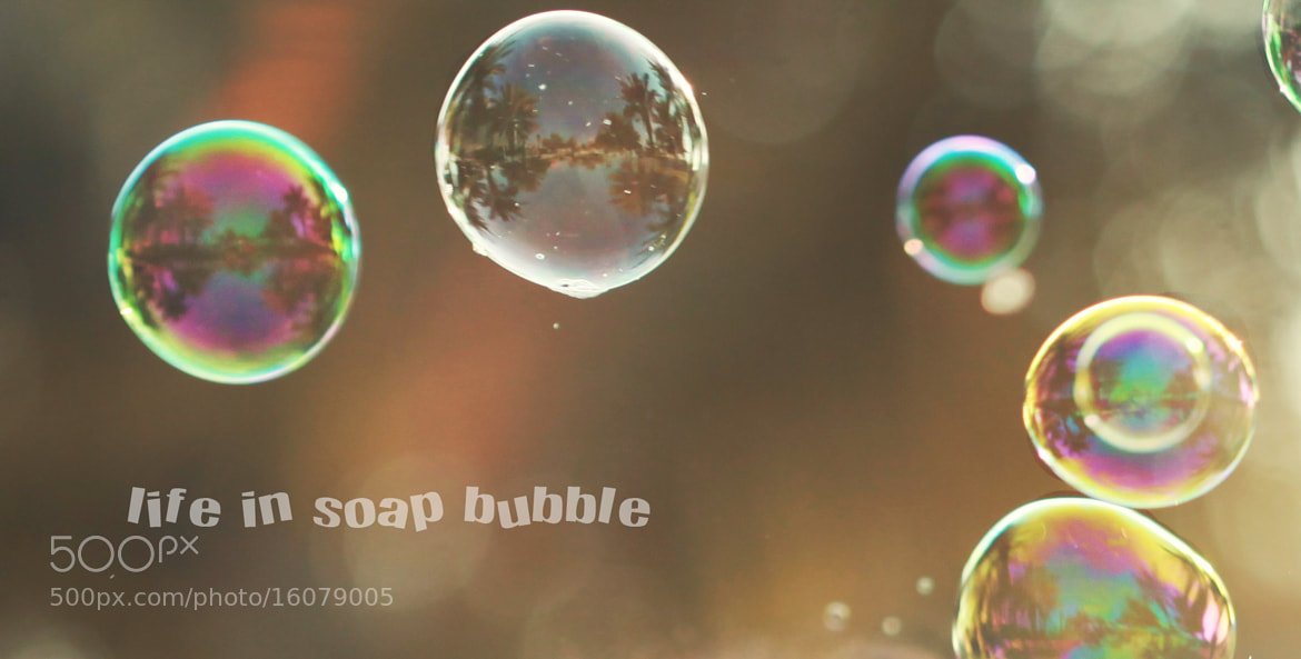 Photograph life in soap bubble by safa kamar on 500px