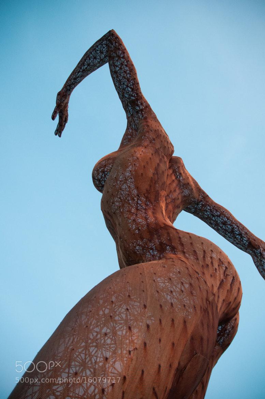 Photograph Woman Mesh Sculpture by Frozen Canuck on 500px