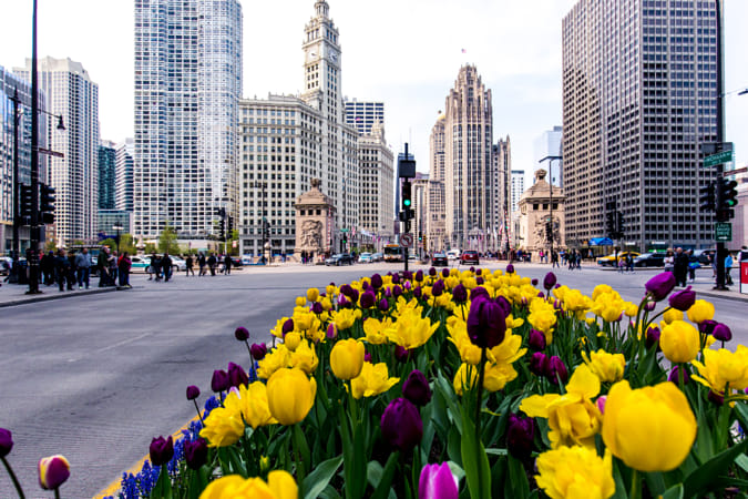 colorful Chicago by Adriana Manni on 500px