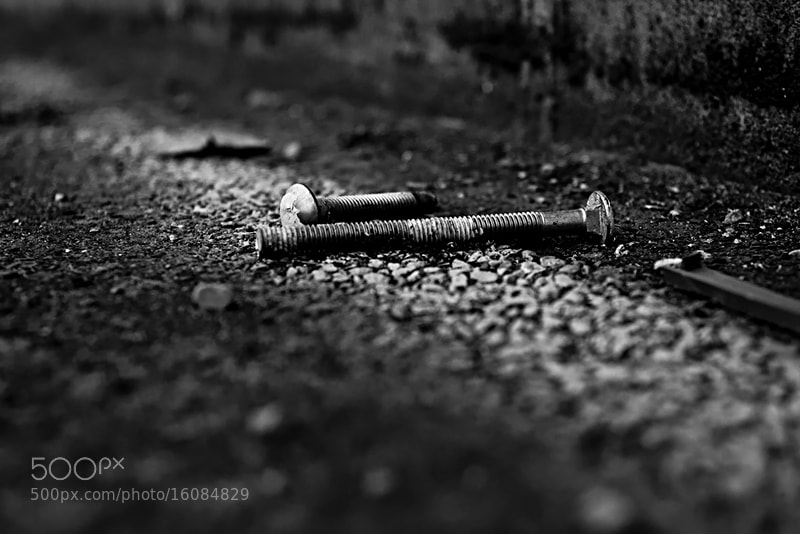 Photograph Screws by Diana Dante on 500px