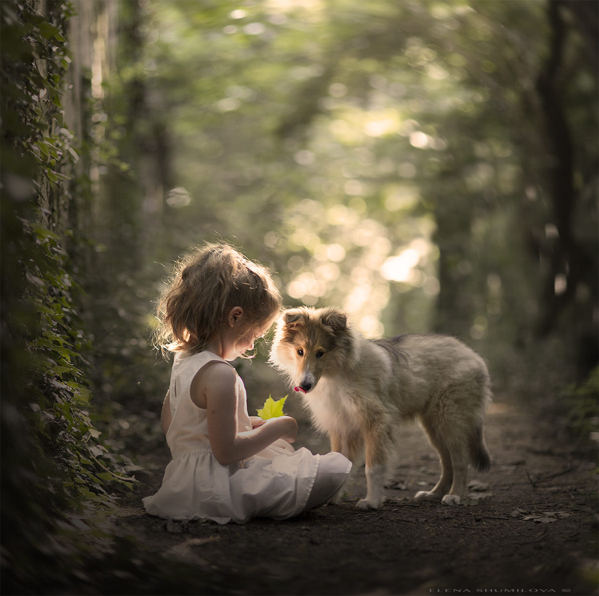 in a shady park... by Elena Shumilova on 500px
