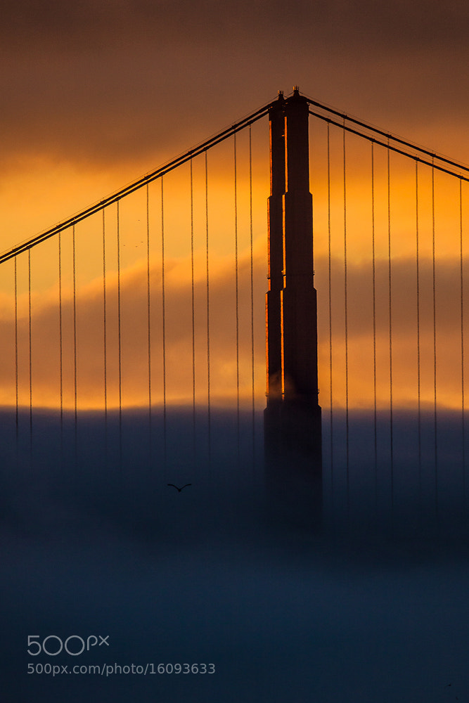 Photograph ...sunset at golden gate... by Stefan Geyer on 500px