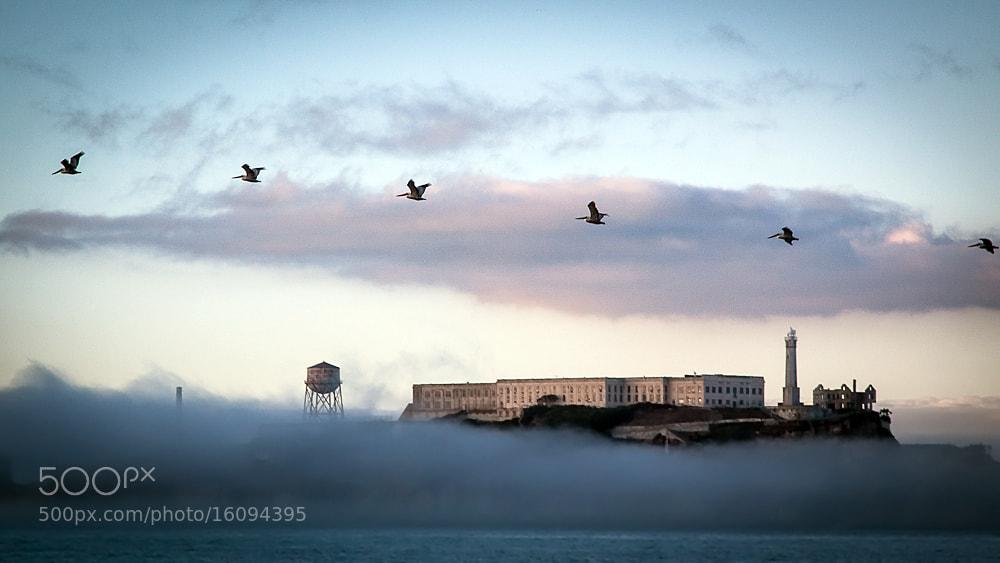 Photograph ...fog at alcatraz... by Stefan Geyer on 500px