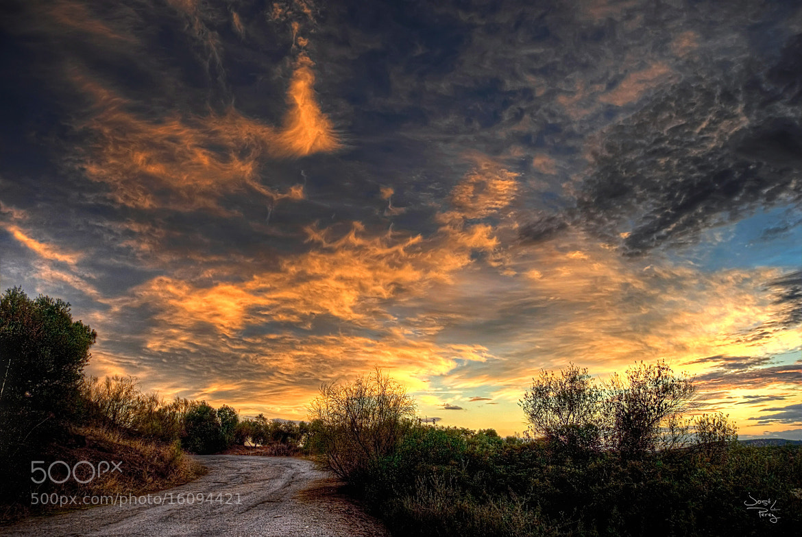 Photograph Sunset by Jose Luis Perez on 500px