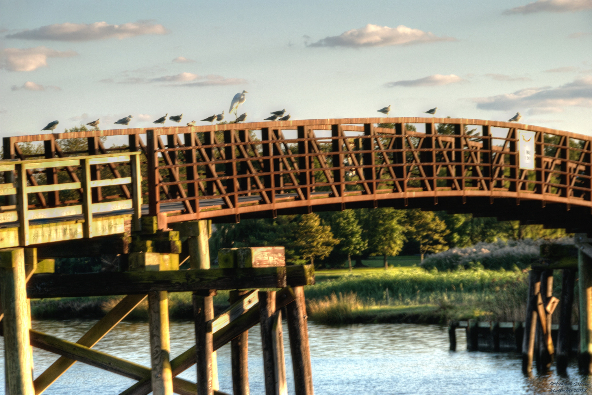 Photograph Birds on a bridge at Dusk by MICHAEL GOFFIN on 500px