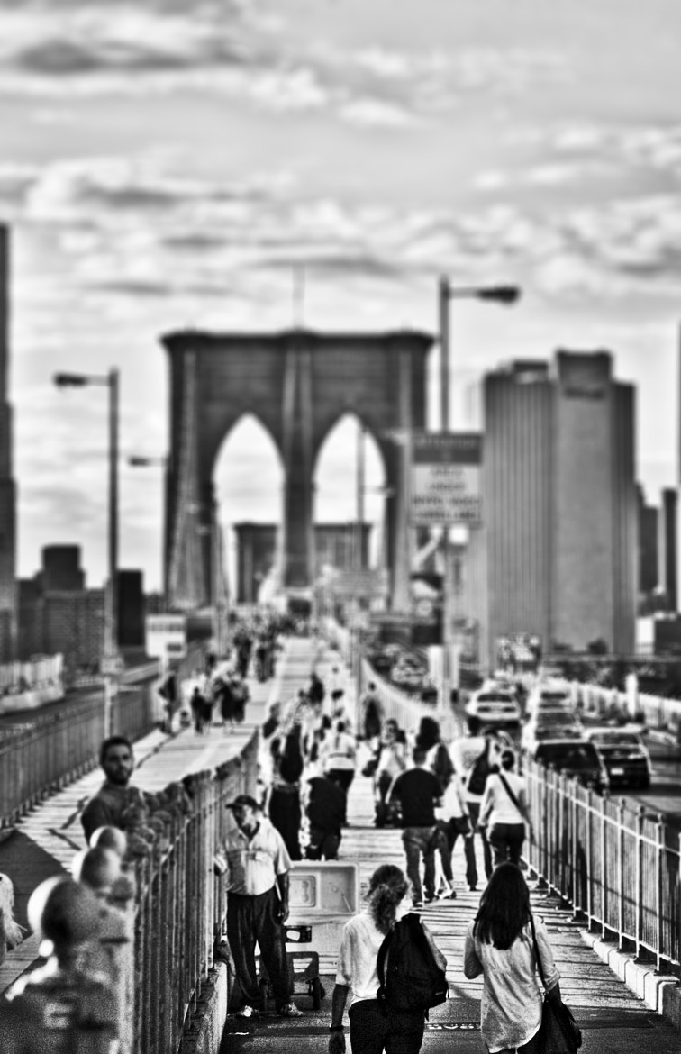 Photograph Tilt shift through the Bridge by Giacomo Signorino on 500px
