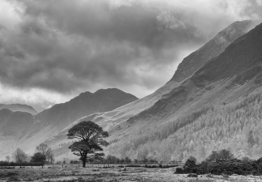 Between Buttermere and Crummock