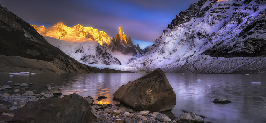 Goldfinger by Timothy Poulton on 500px.com