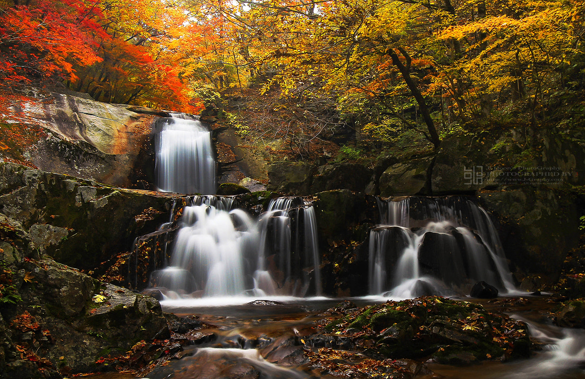 Photograph autumn of korea by JIHOON HWANG on 500px