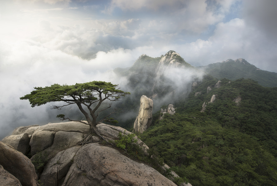 Guardian of the mountain by jae youn Ryu on 500px.com