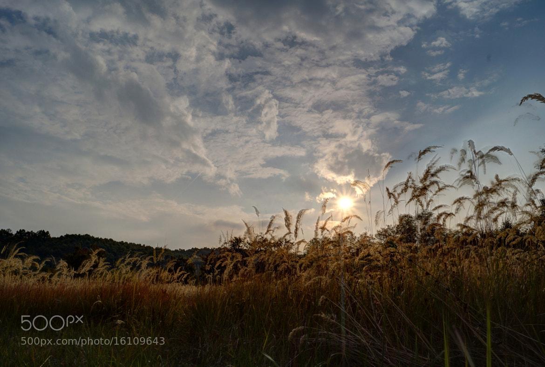 Photograph Sunset by Krasimir Hintolarski on 500px