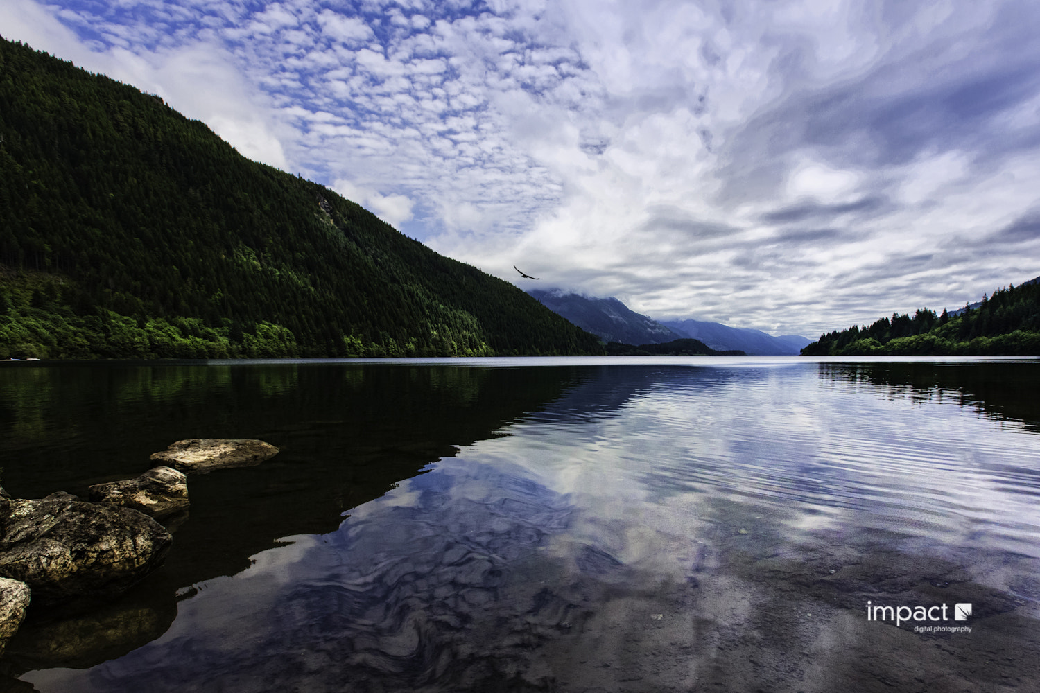 Photograph Lake Cowichan by Mike Thompson on 500px