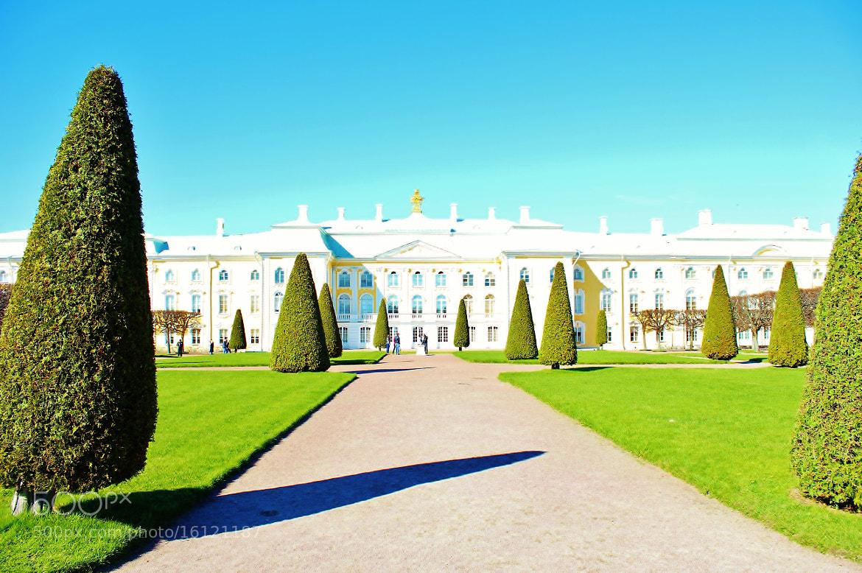 Photograph Peterhof by Konstantin DaCosta on 500px