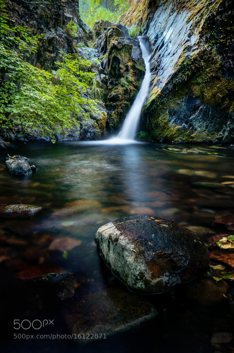 Photograph Trip to Nowhere (Deadwood Falls) by Eric Leslie on 500px
