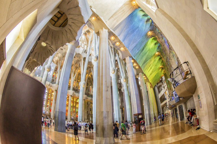 Fisheye view of La Sagrada Familia