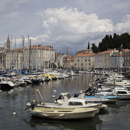 Piran harbor area