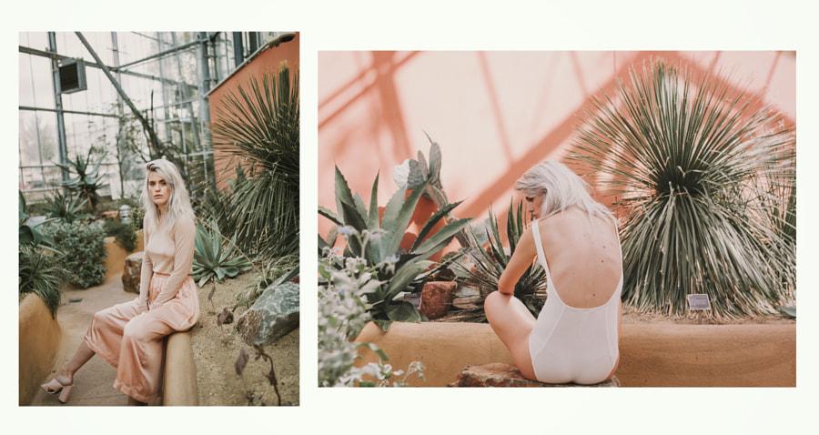 Sheer by Amel Herzi on 500px.com