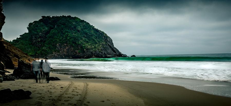 Praia Brava VIII