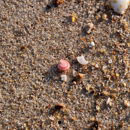 Pink spot on sand