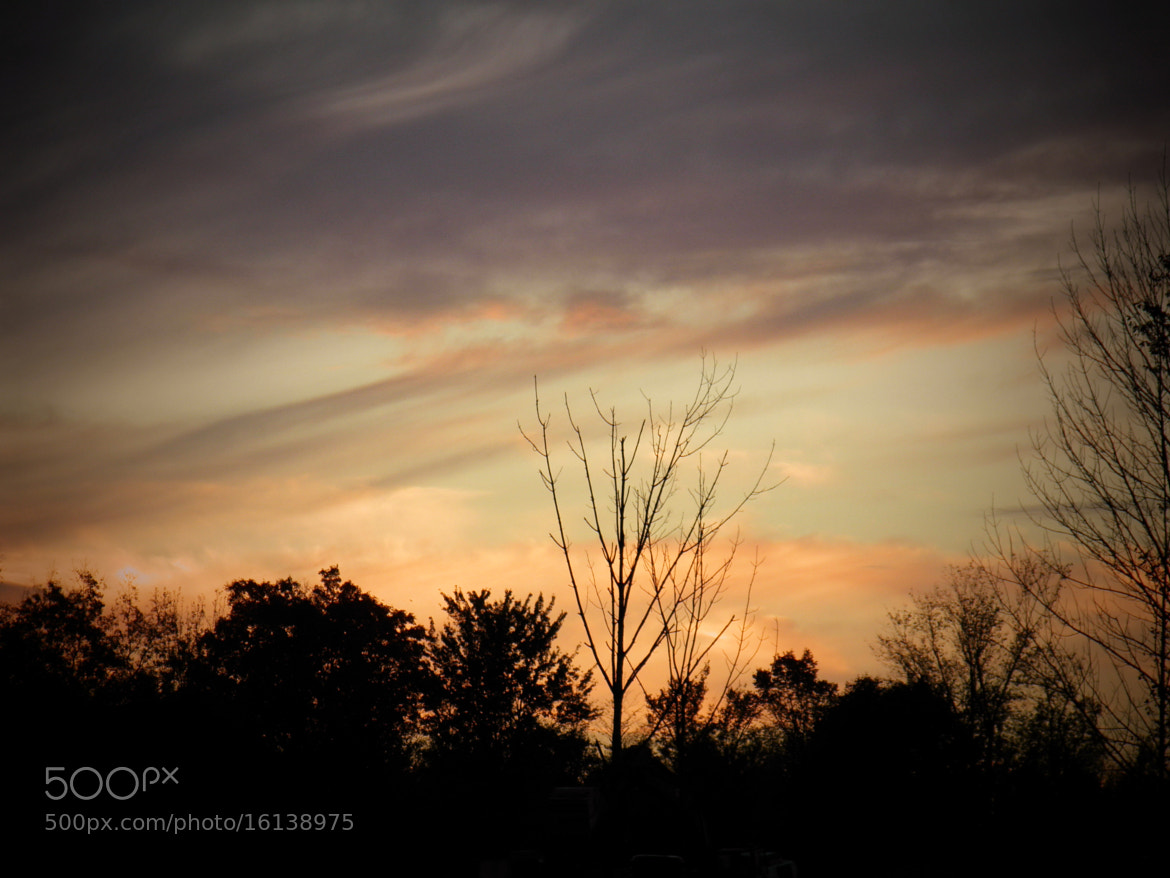 Photograph Sunset in Fall by Debbie Tagoe on 500px