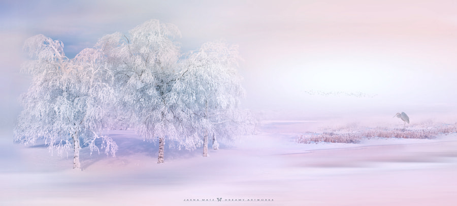 ~ Poetic moment ~ by Jasna Matz on 500px.com