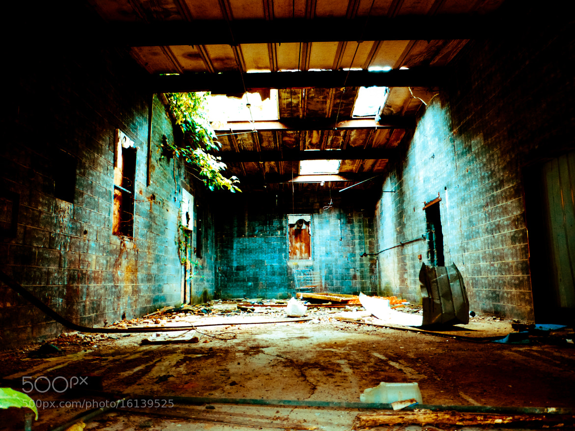 Photograph Decay by B. H. on 500px