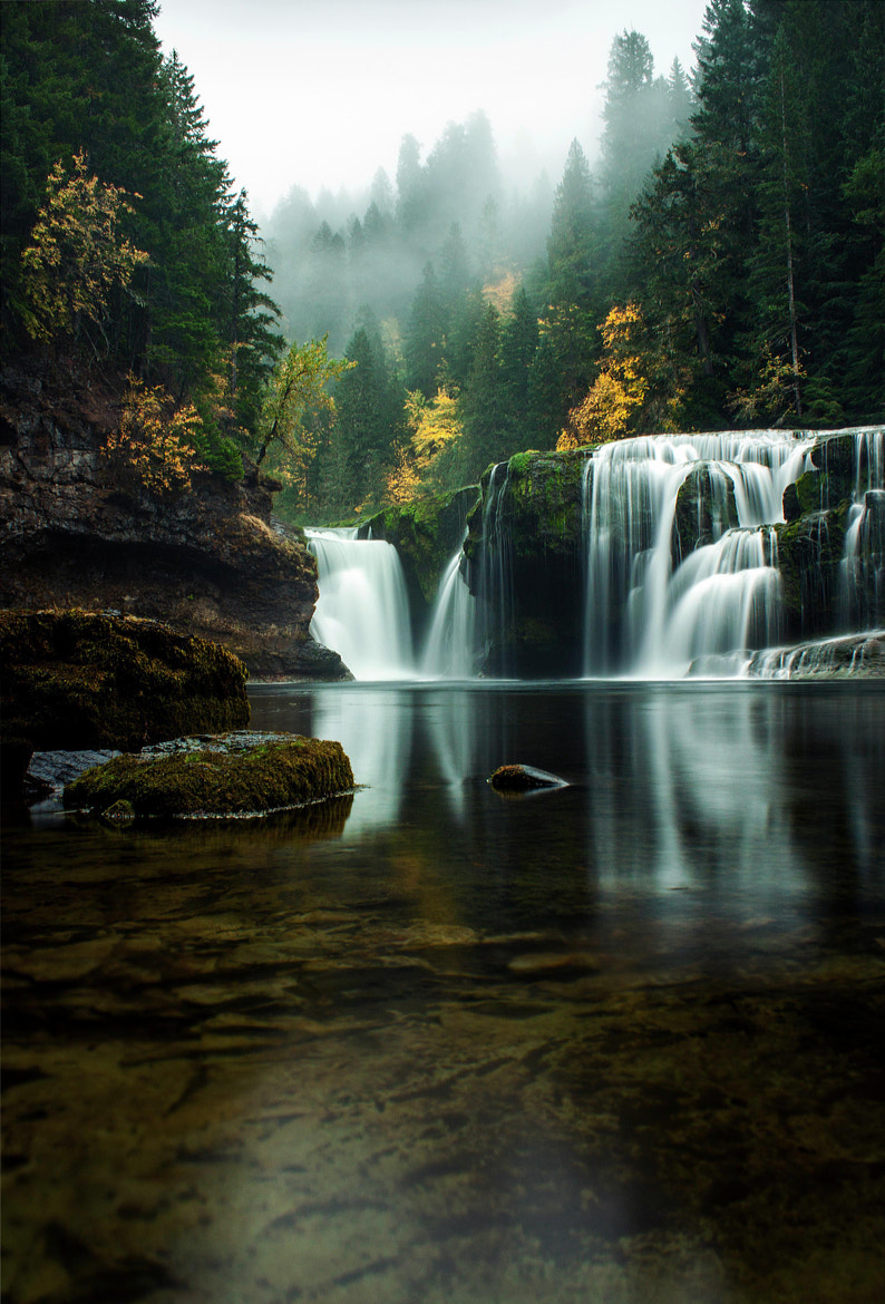 Photograph Into the Mystic by Kristina Wilson on 500px