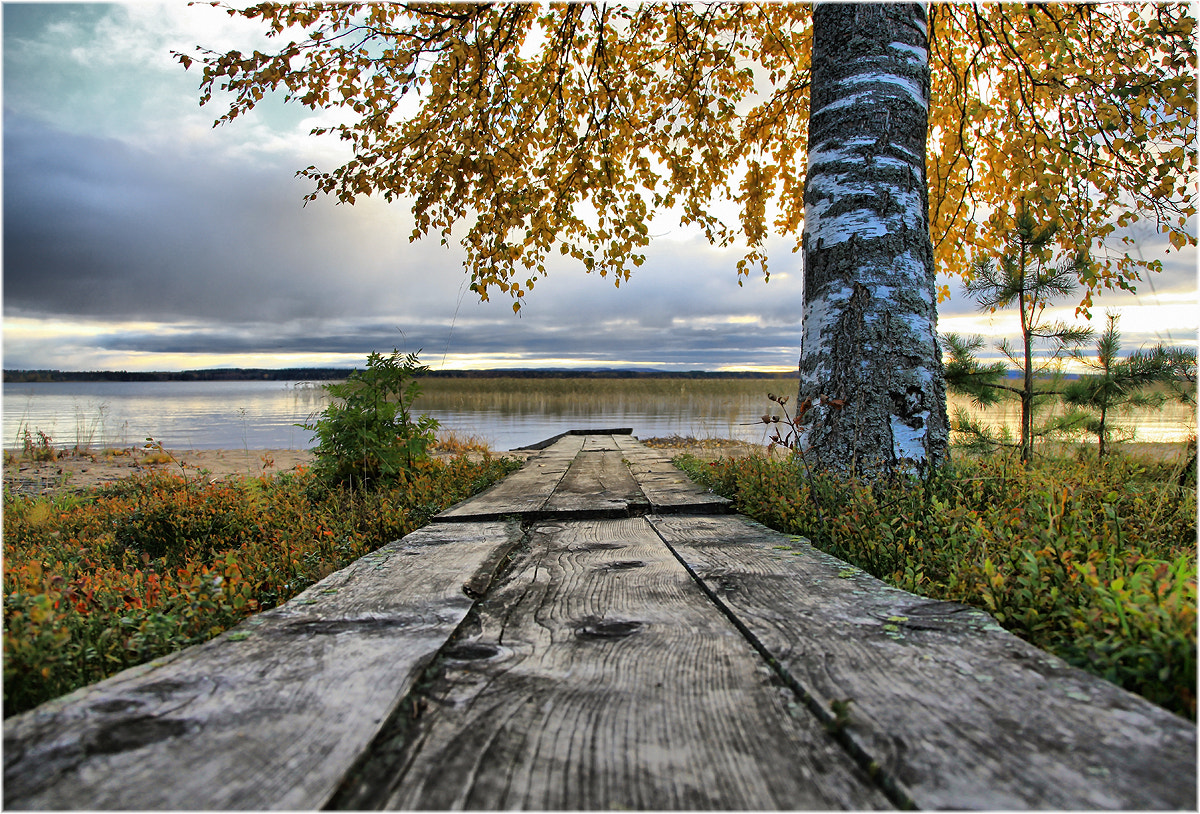 Photograph Finnish autumn ...  by Valtteri Mulkahainen on 500px