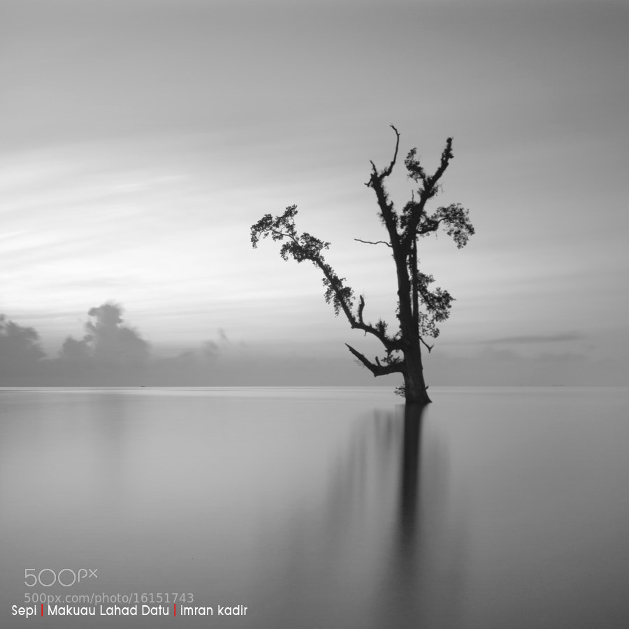 Photograph lonely by Imran Kadir on 500px