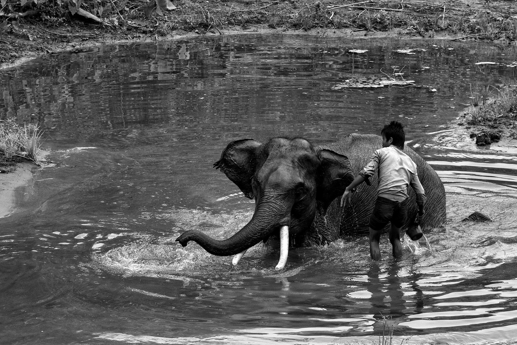 Photograph Bathing Time by Ye Tun on 500px