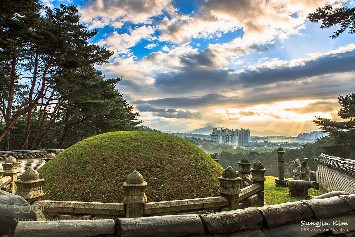 Photograph Morning of royal tomb by Sungjin Kim on 500px