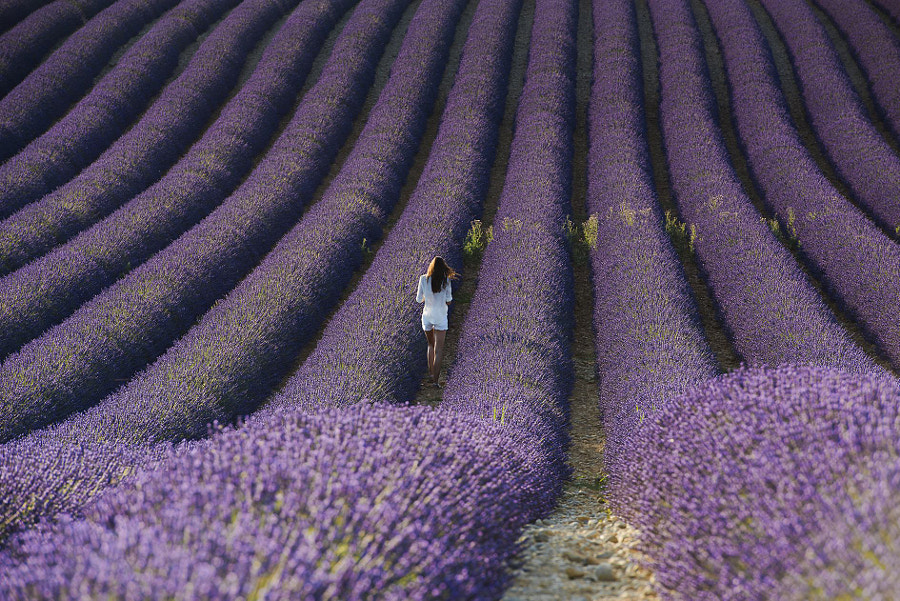 provence by simone storelli on 500px.com
