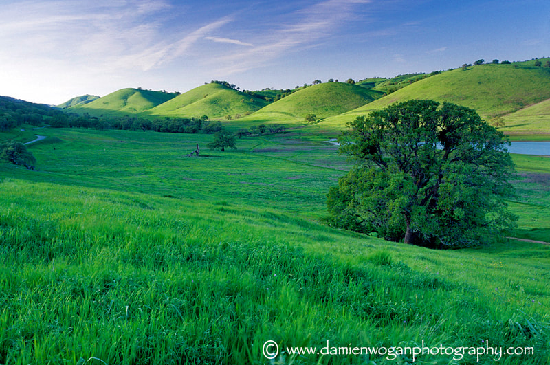 Photograph Drumlins  by Damien Wogan on 500px
