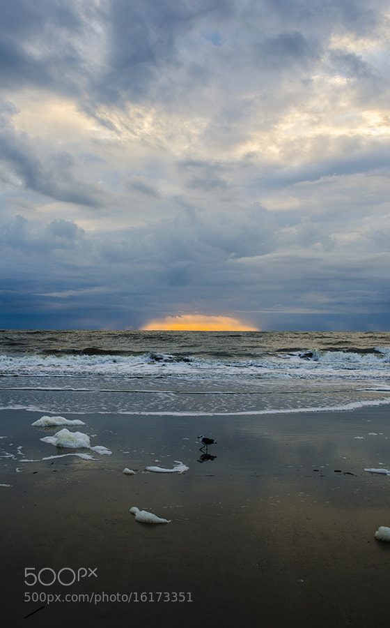 Photograph Coming up by Samantha LaRue on 500px