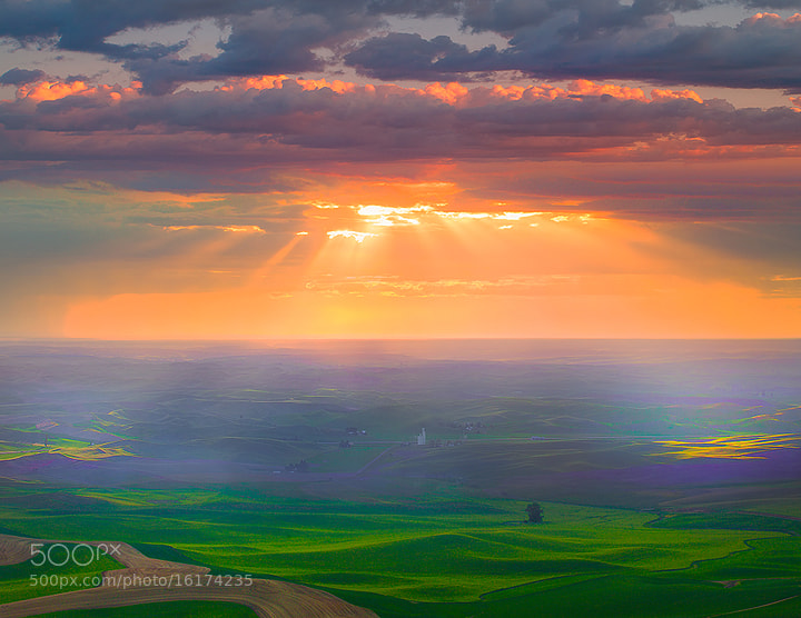 Photograph Palouse Sunburst  by Kevin McNeal on 500px