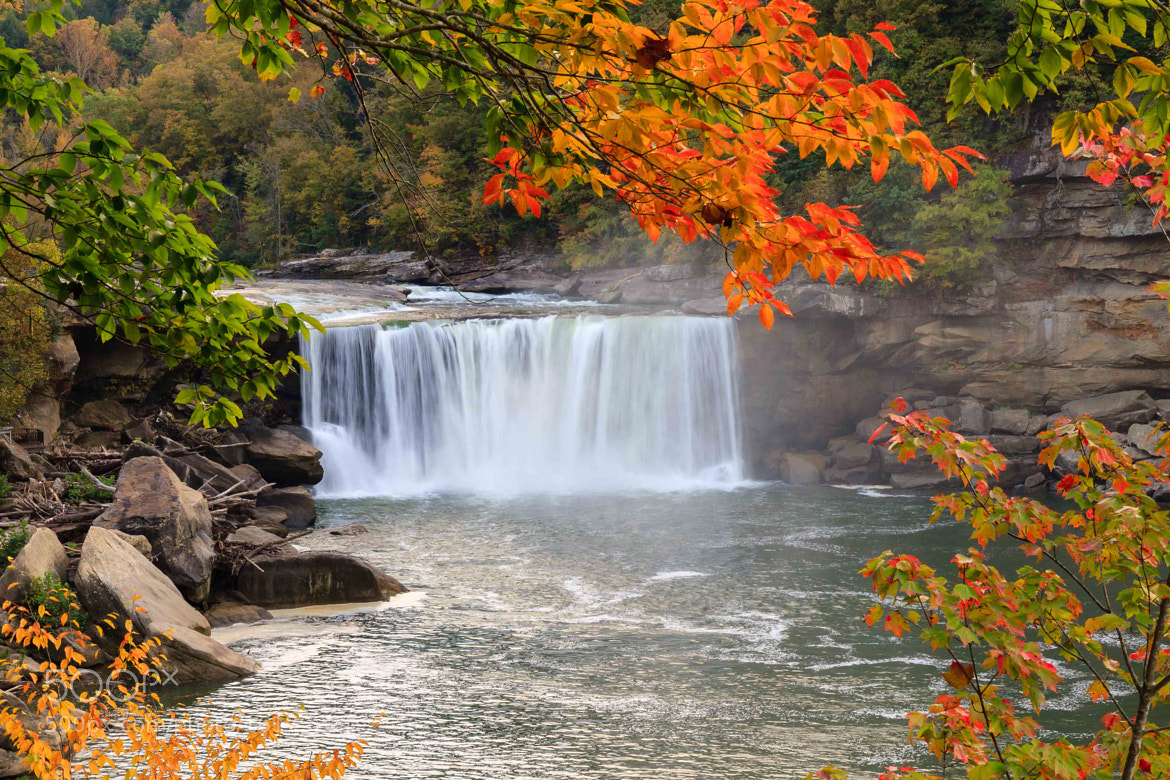 Photograph Cumberland Falls by Larry Pennington on 500px