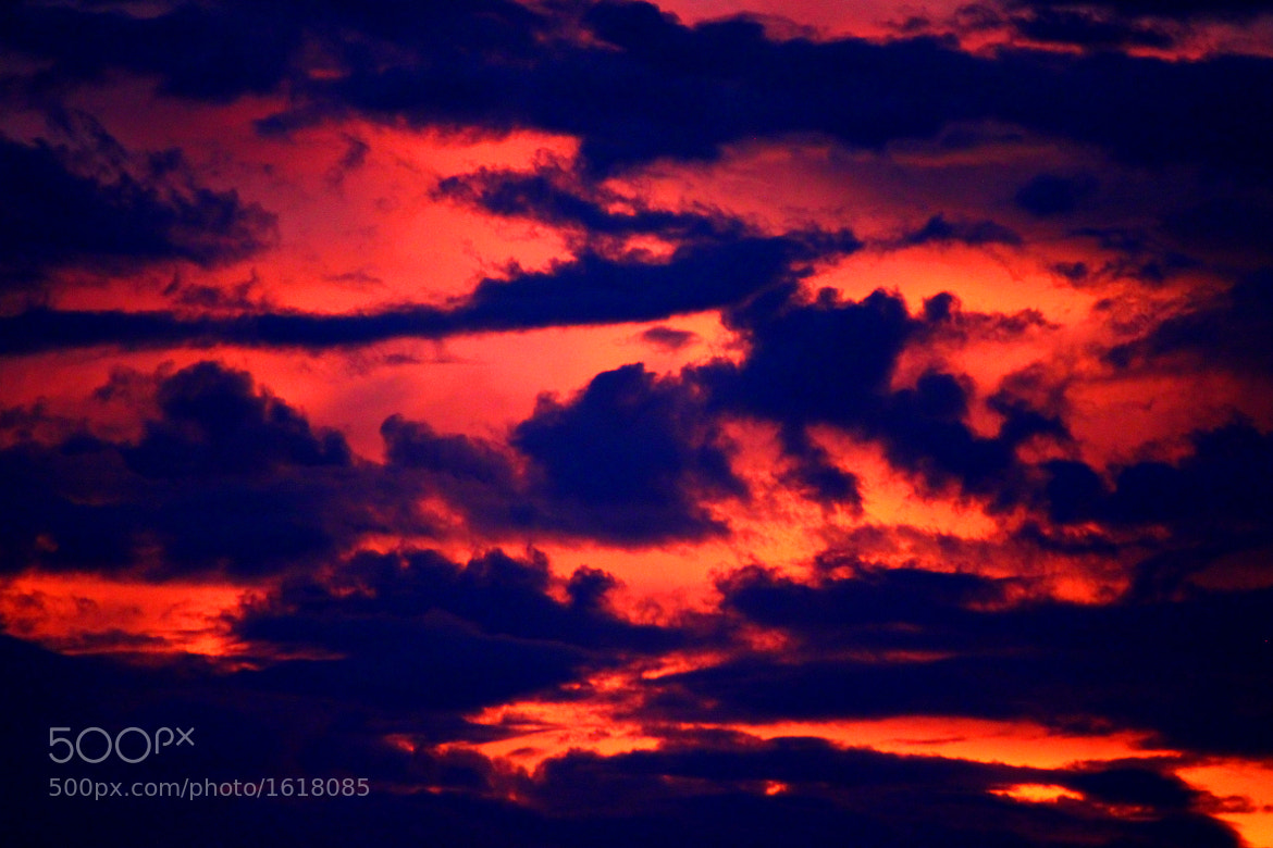 Photograph sky camouflage by Maria Arenas on 500px