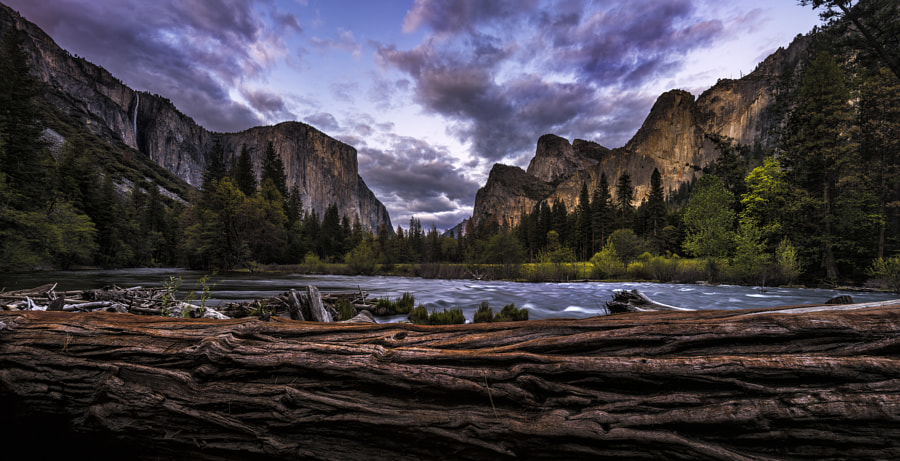 They Might Be Giants by Timothy Poulton on 500px.com