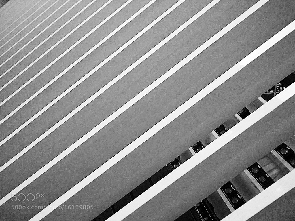 Photograph Lines ...  by Maryam Essa on 500px