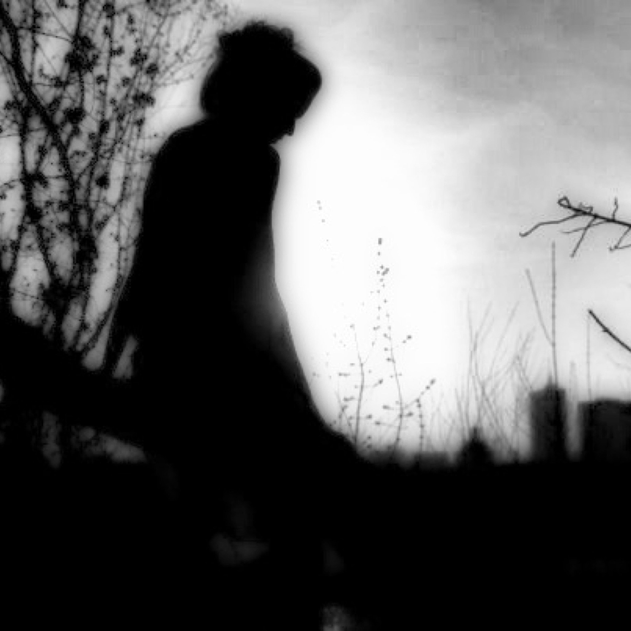 Photograph Still my guitar gently weeps by lydia davison whitcomb on 500px