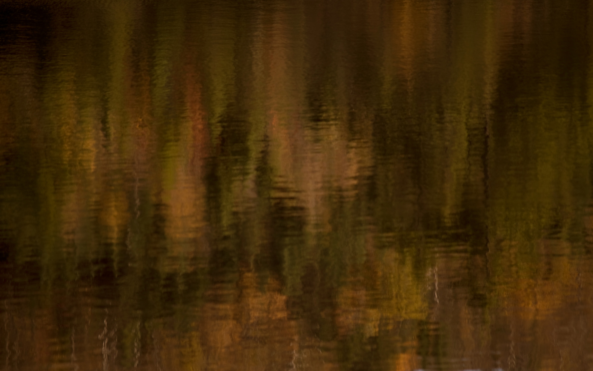 Photograph Fall Reflections by Kelly Goode on 500px